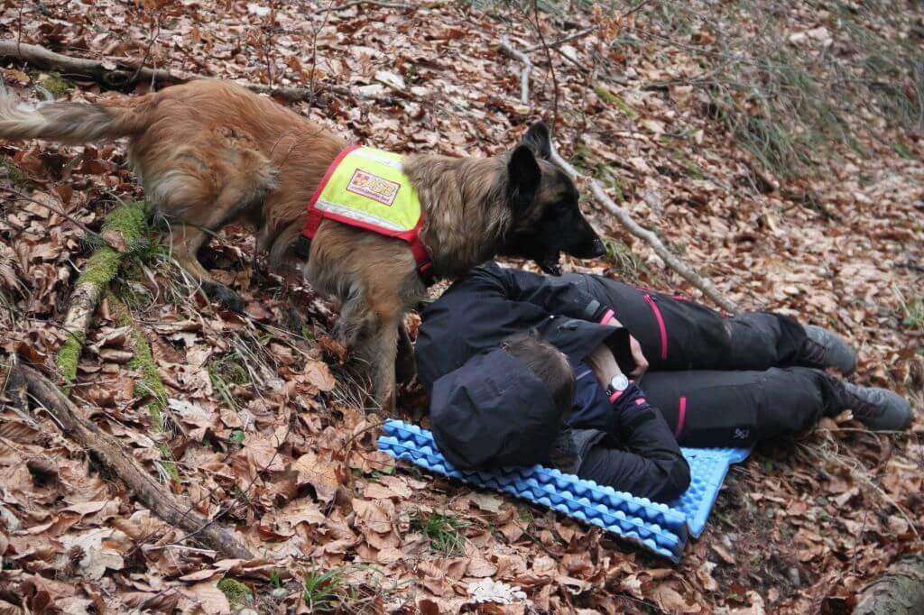 Fund durch Flächensuchhund-72dpi.jpg